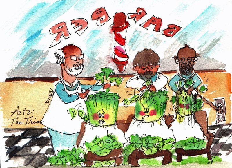 Celery at Barbers