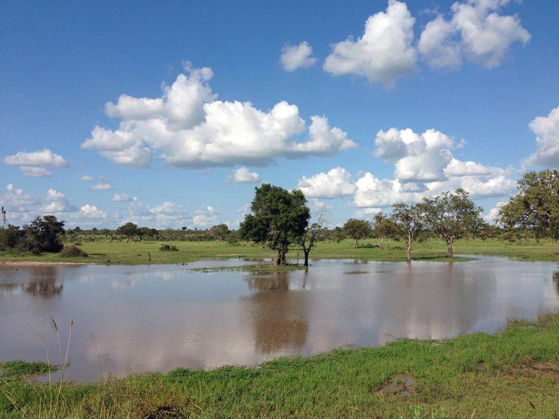 Pond SA